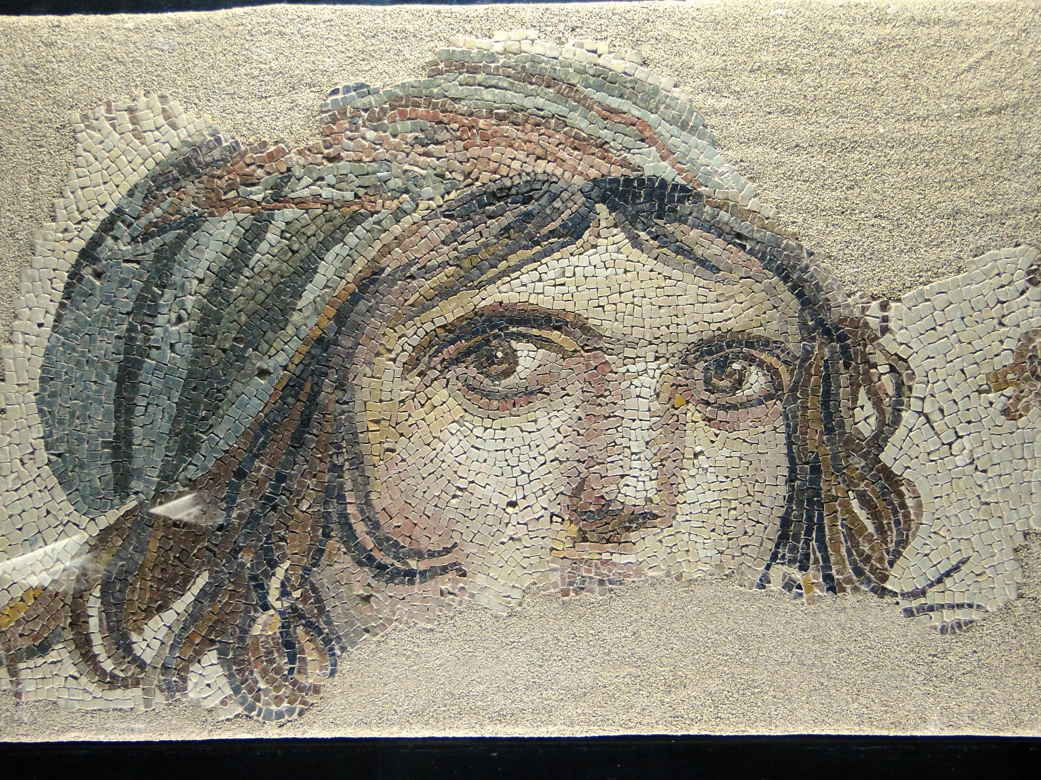 Zeugma Examples The zeugma mosaic museum inZeugma Examples